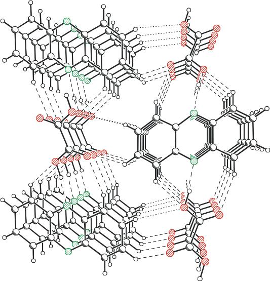 lichtinduzierter Elektronen-Protonen-Transfer im Kokristall (co-crystal) aus Phenazin und Oxalsäure